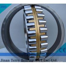 Les roulements à rouleaux cylindriques à faible bruit (NN3005)