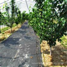 Tissu de couverture végétale tissé en PP de paysage pour le contrôle des mauvaises herbes