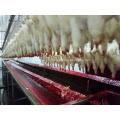 Comedero para equipos de procesamiento de aves de corral