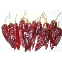 Bonne qualité pour l'Amérique Chili rouge