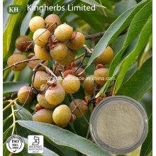 Natural Extrato puro de Sapindus Mukorossi 40%, 70% Saponinas; Ratio Extract