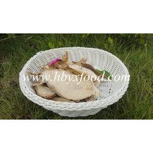 Grade C1 Dried Boletus Pure Natural Raw