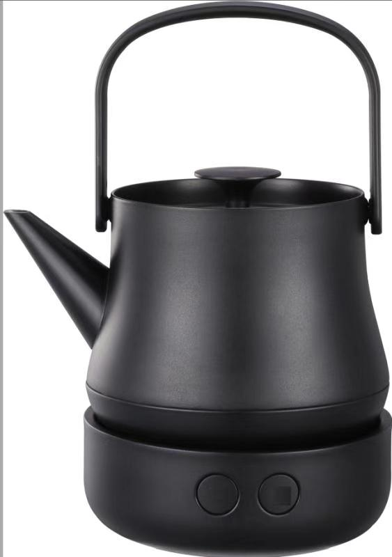 Multi-functional electric tea kettle