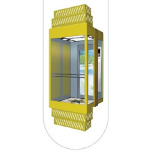 Observation Lift with Capacity 1250kg