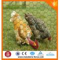 Galvanizado Red de alambre hexagonal / Alambre hexagonal / Alambre de pollo