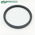 DMS High quality made in china Valve spring energized Seal for cylinder