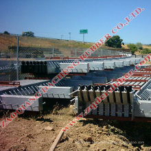Hot Sale Modular Expansion Joint (made in China)
