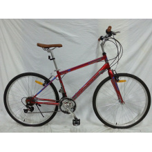 Bicicleta urbana de buena calidad de América del Sur 18speed (FP-CB-051)