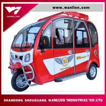 Elektrisches Roller-erwachsenes Dreirad des Roller-650W drei aus China