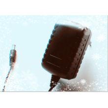 CE и RoHS 100-240В переменного тока 10В 500ма постоянного тока высокого качества переключения питания адаптер