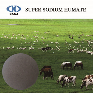 sel d'acide humique pour animal