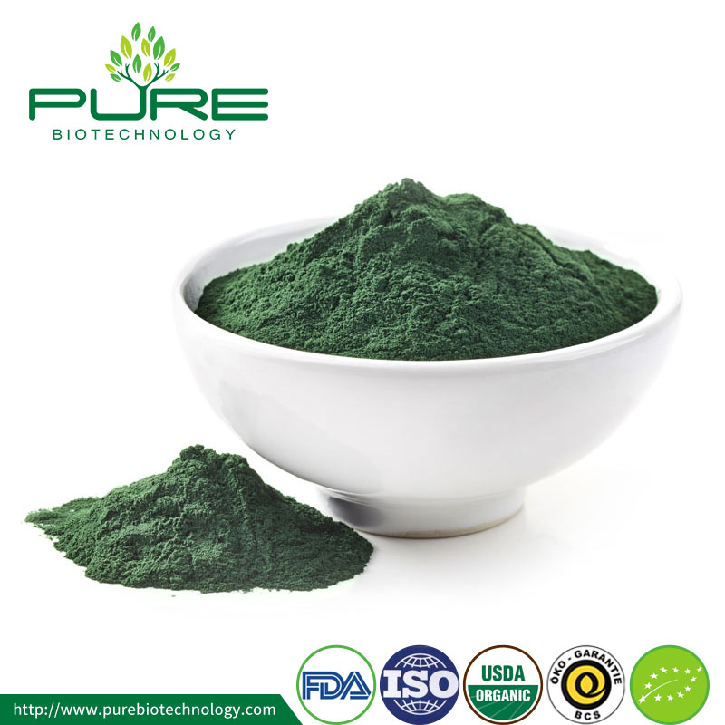 Raw Fresh Spirulina Powder Organic 3