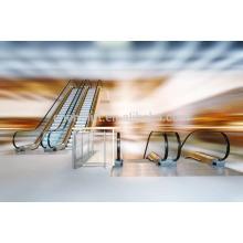 2015 Escadas rolantes elétricas de baixo preço do projeto novo