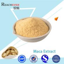 Pure Natural Maca Extract Powder Maca Root Extract