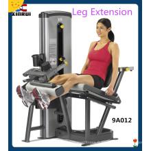 Machine d'extension de jambe assise