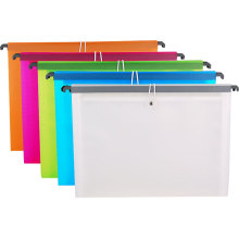 Chinese Supplier Fashion and Practical Sh5030 Expanding File with Hook
