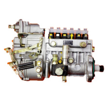 WD10 engine fuel injection pump 612601080580 for WeiChai