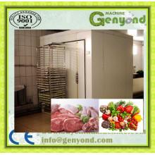 Equipamento de legumes / Equipamento de congelação rápida