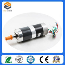 57mm Brushless DC Motor for Automatic Door System (FXD57BL-2480-001)