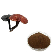 Free sample 10%-50% polysaccharides Ganoderma lucidum reishi mushroom extract powder