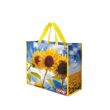 Eco Friendly Recyclable Customized print promotional non woven bag pp non woven shopping bag printing