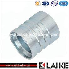 (00402) Raccords de ferrure à tuyau hydraulique avec haute qualité