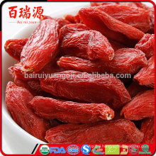Chocolate goji berries where to buy goji berries where to buy it goji berries where to buy in japan