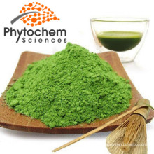 Organic Fresh Matcha Green Tea Powder 400 mesh