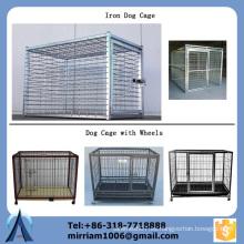 China venta directa de la fabricación 6 'alta jaula del perro del hierro