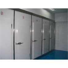 Refrigeration Cold Room Door Swing Door Freezer Door