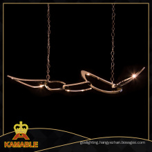 Project Stainless Steel Pendant Hanging Light (ka3181)