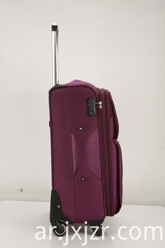 Purple Luggage Case