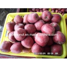 Sweety Huaniu Apple