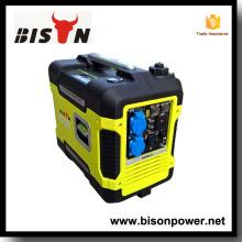 Bison China Zhejiang Automatik-Transfer-Schalter für Generator 2KW 3000 Watt Inverter Generator zum Verkauf