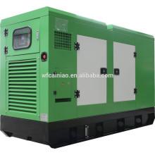 Generador diesel silencioso 30kw Ricardo