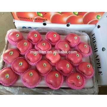 Свежее яблоко Фудзи свежие фрукты для продажи