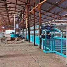 conveyor roller veneer dryer machine for sale
