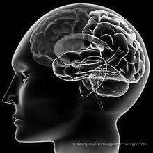 Лечение синдрома Меньера Бетагистина Дигидрохлорида