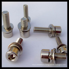Bolt with Washers
