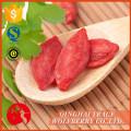 La muestra libre al por mayor wolfberry sundried, fuente del manfacturer secó goji bayas