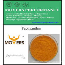 Vitamin Nutrition Supplement Product: Fucoxanthin