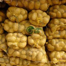 Nature / Produits de pommes de terre déshydratées