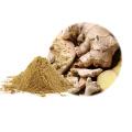 Polvo de jengibre puro orgánico natural