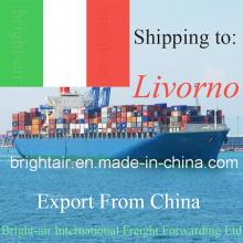 Китай логистическая компания Перевозка океана экспедитора из Китая в Ливорно
