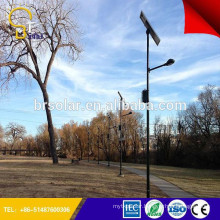 famous products made in china Applied in More than 50 Countries 5 years Warranty lamp parts for lamp pole