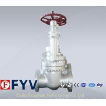 Pn 150-900 Carbon Steel Cryogenic Globe Ventil