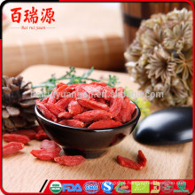 Benefícios das bagas de goji secas secas goji berries trader joe goji bagas orgânicas cruas
