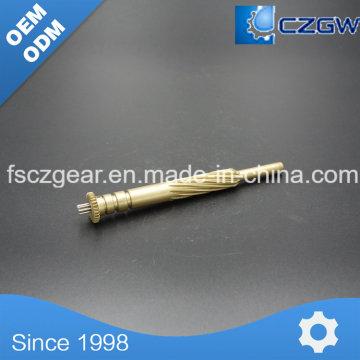 High Precision Customized Messing Transmission Kleine Spline für verschiedene Maschinen