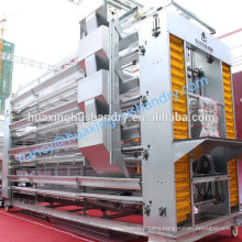 hot galvanized egg chicken layer cages