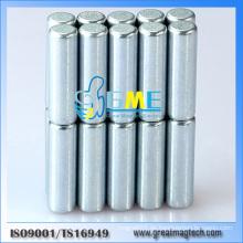Starke Seltene Erde 3X10mm Zylinder Magnete